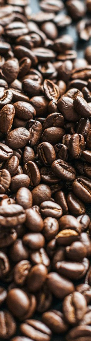 Coffee-Beans-Cropped